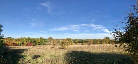 Conservation Area Big Sky