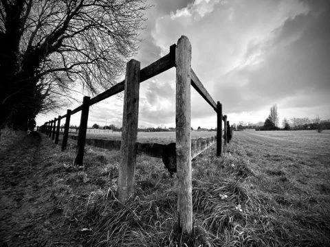 03jan21 fence