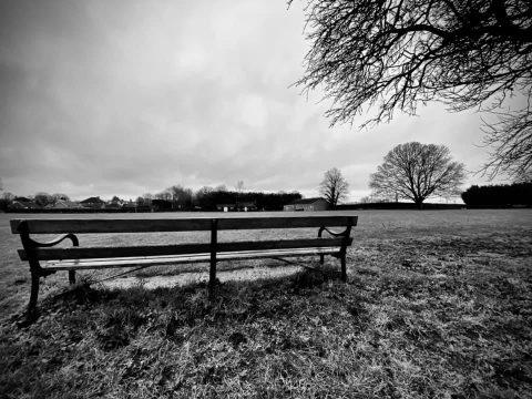14jan21 bench