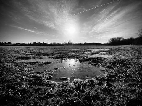 17jan21 puddle