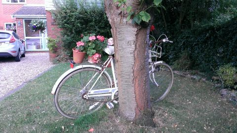 2015-07-06 bike