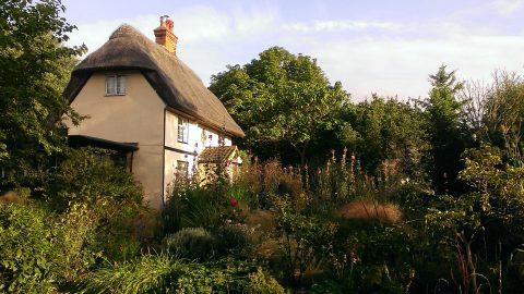 2015-08-12 cottage garden