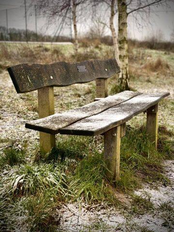 24jan21 bench