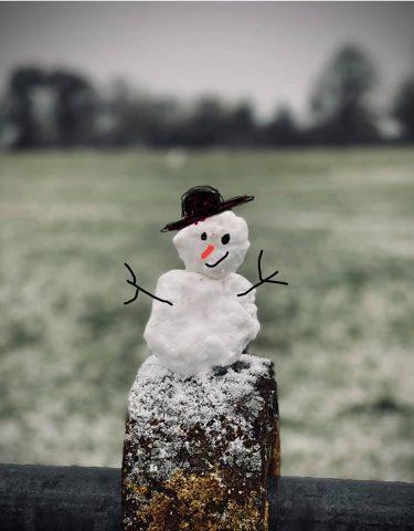 24jan21 snowman