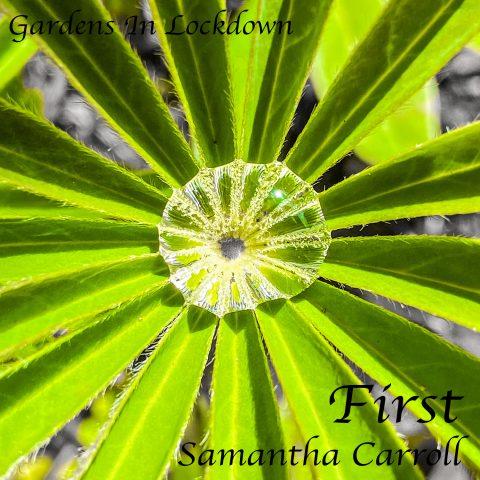 Samantha Carroll - In A Bubble